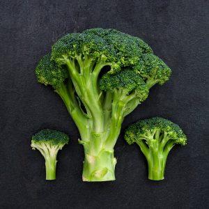 mikro+ Pflanzenstoffe